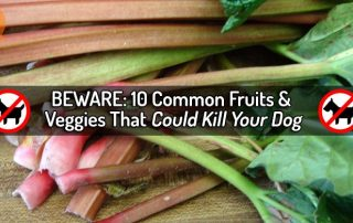 beware fruits and veggies
