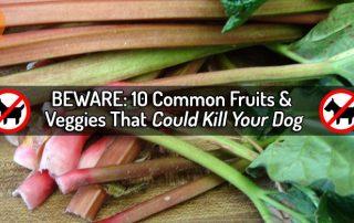 beware fruits and veggies